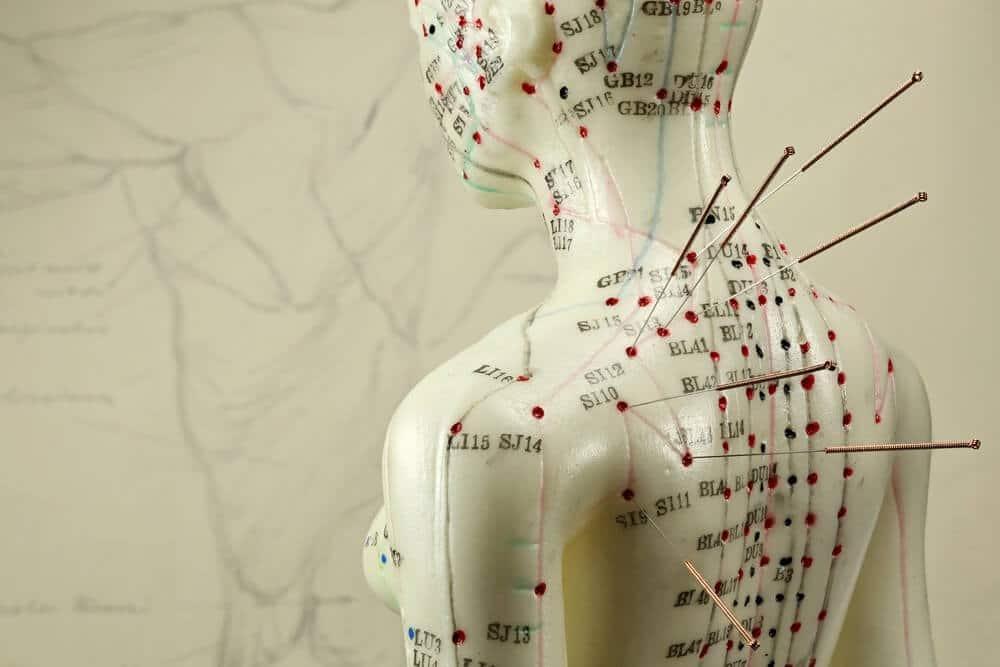 Bliv akupunktør